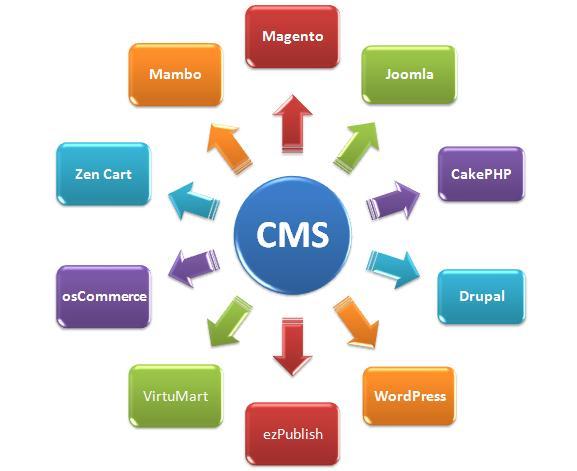 FSA assembles great CMS