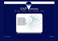 gap ventures